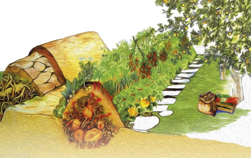 Repas à thème suivi d'une conférence « Introduction à la permaculture »